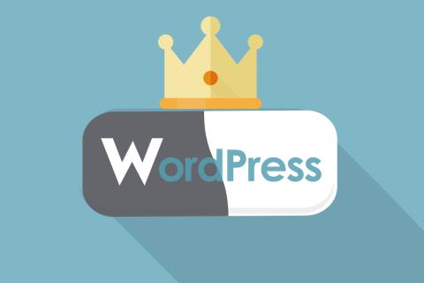 ブログ作成にWordPress(ワードプレス)が人気な5つの理由